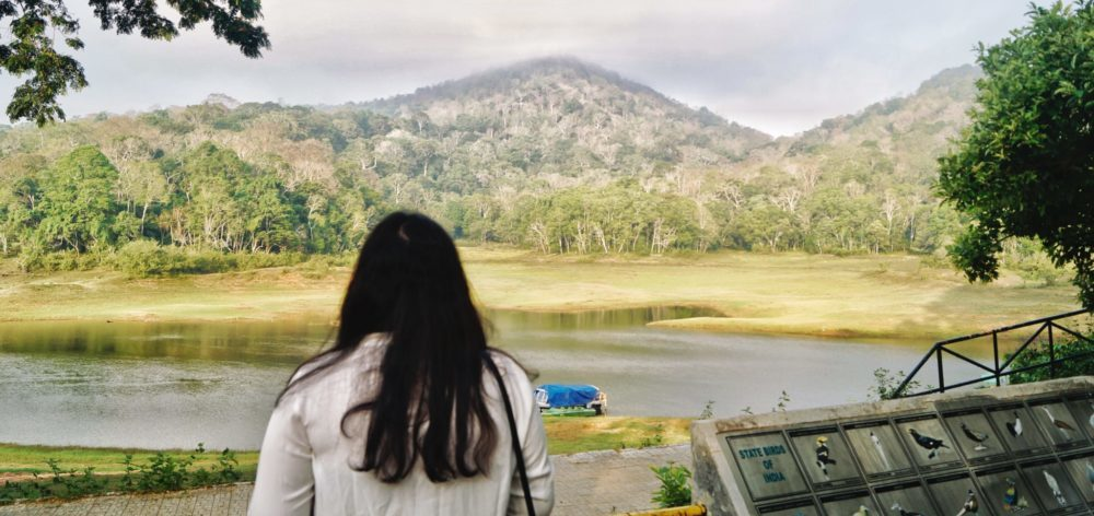 things to do in thekkady Periyar National Park